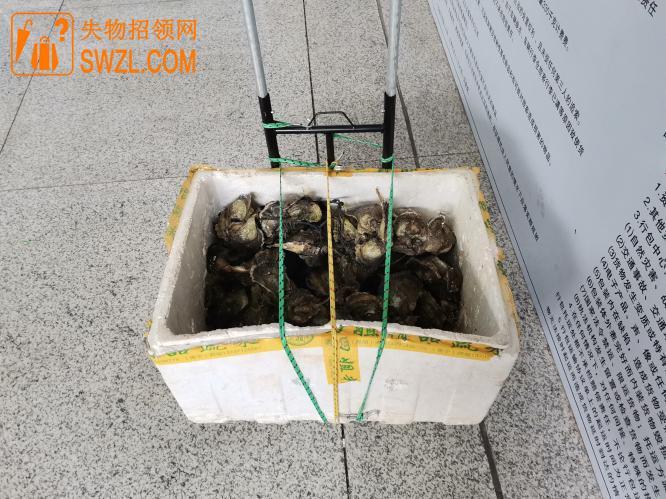 寻物启事: 深圳市大剧院红荔村门口共享单车上拉杆车丢失